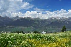 Panorama do verão de alpes suíços Fotos de Stock Royalty Free
