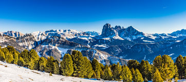 Panorama of the Dolomites with snow-capped peaks. And conifers Stock Photos