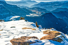 Panorama of the Dolomites with snow-capped peaks. And conifers Royalty Free Stock Photography