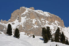 Panorama of Dolomiti Alps (Italy) Royalty Free Stock Image