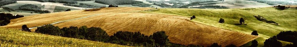 Panorama dos prados Imagem de Stock