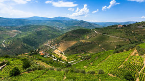 Panorama of Douro Valley, Portugal. Royalty Free Stock Photography