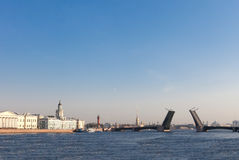 Panorama of the drawn Palace Bridge in St. Petersburg Stock Images
