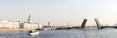 Panorama of the drawn Palace Bridge in St. Petersburg Royalty Free Stock Image