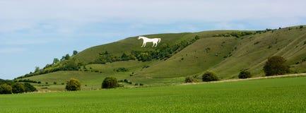 Panorama du cheval blanc de Westbury Images libres de droits