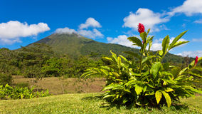 Panorama du Costa Rica Images libres de droits