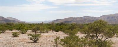 Panorama du désert de Kaokoland image libre de droits
