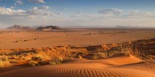 Panorama du haut de la dune d'Elim Photographie stock libre de droits