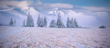 Panorama du paysage brumeux d'hiver en montagnes Photos stock