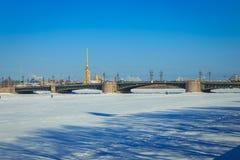 Panorama du pont de palais à St Petersburg Photos libres de droits