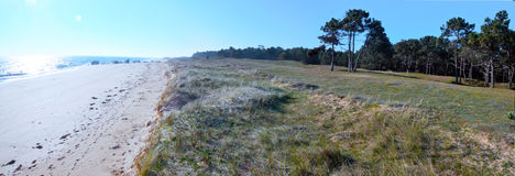 Panorama of dune coastline in north of Yeu Island. The Atlantic Ocean and sandy beach in sunlight are at right and the forest is at right and duna is at center Stock Photography