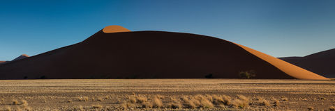 Panorama of Dune 45 in the evening light Stock Images