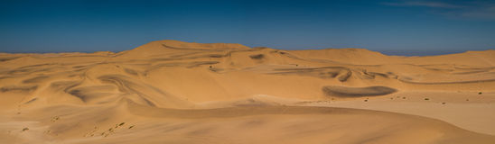 Panorama of the Dunes of the Namib Royalty Free Stock Photos