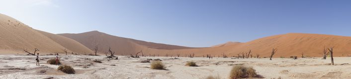 Panorama of dunes in Namibia. Panorama of beautiful dunes in Namibia Royalty Free Stock Images