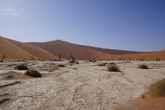Panorama of dunes in Namibia Royalty Free Stock Images