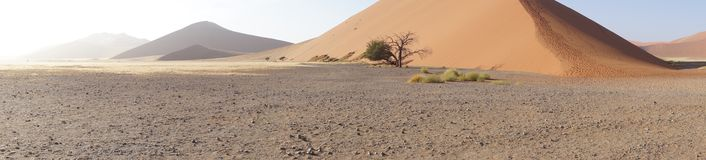 Panorama of dunes in Namibia. Panorama of a dune in Namibia Stock Photos