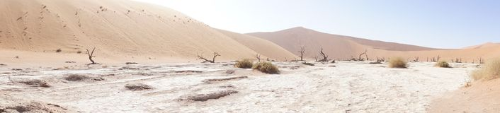 Panorama of dunes in Namibia. Panorama of high dunes in Namibia Stock Photo