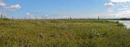 Panorama of the East Siberian tundra. Royalty Free Stock Photos