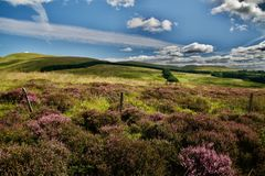 Panorama Ecosse Images stock
