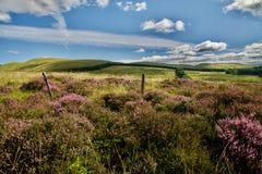 Panorama Ecosse Image libre de droits