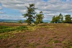 Panorama Ecosse Photos libres de droits