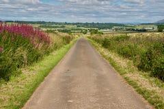 Panorama Ecosse Photo libre de droits