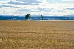 Panorama Ecosse Images libres de droits
