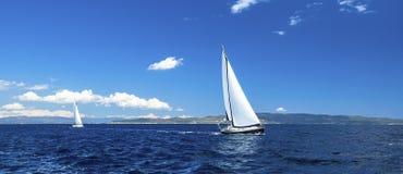 Panorama żeglowania regatta Rzędy luksusowi jachty przy marina dokiem Natura obrazy stock