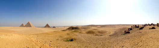 Panorama Egypt. View of pyramids, desert, camels and shining sky Stock Photos