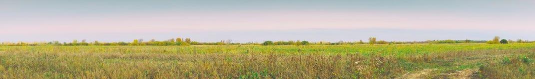 Panorama einer großen Herbstwiese am bewölkten Tag stockbilder