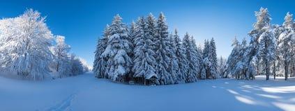 Panorama eines schneebedeckten Waldes mit einem Picknickplatz Lizenzfreies Stockfoto