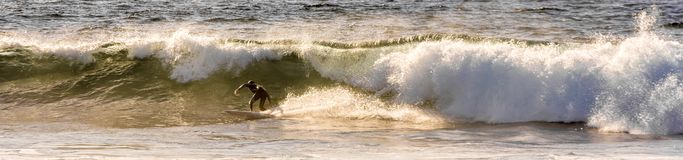 Panorama eines Surfers, der geschickt eine wilde Welle reitet lizenzfreie stockbilder