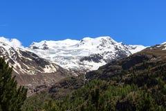 Panorama em cumes de Ortler, Stelvio National Park da montanha da geleira de Forni Fotografia de Stock