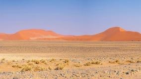 Panorama em dunas de areia coloridas e na paisagem cênico no deserto de Namib, parque nacional de Namib Naukluft, destino do turi video estoque