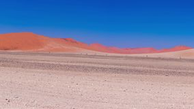 Panorama em dunas de areia coloridas e na paisagem cênico no deserto de Namib, parque nacional de Namib Naukluft, destino do turi vídeos de arquivo