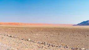 Panorama em dunas de areia coloridas e na paisagem cênico no deserto de Namib, parque nacional de Namib Naukluft, destino do turi filme
