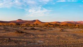 Panorama em dunas de areia coloridas e na paisagem cênico em Sossusvlei no deserto de Namib, parque nacional de Namib Naukluft, t filme