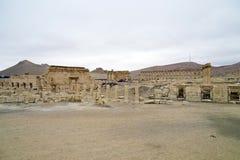Panorama en el Palmyra, Siria Imagen de archivo libre de regalías