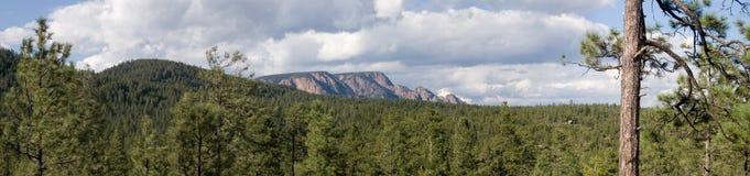 Panorama en hausse 1 de rempart Photo libre de droits