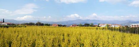 Panorama en Italia Fotos de archivo