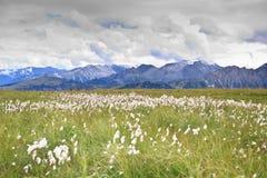 Panorama en las montañas fotos de archivo