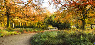 Panorama entrance of park in autumn Royalty Free Stock Photo