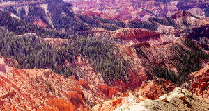 Panorama, eroded red Navajo sandstone. Pinnacles and canyons Cedar Breaks National Monument, Utah stock images