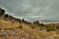 Panorama escénico del bosque y de la laguna foto de archivo