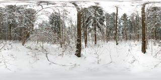 panorama esférico 3D del bosque del invierno con nieve y de pinos con ángulo de visión de 360 grados Aliste para la realidad virt fotos de archivo