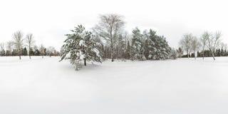 panorama esférico 3D del bosque del invierno con nieve y de pinos con ángulo de visión de 360 grados Aliste para la realidad virt foto de archivo libre de regalías