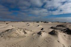 Panorama esquelético de la costa Imagen de archivo