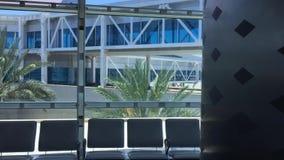 Panorama- fönster med sikt på palmträd och portar till flygplan i flygplats Flygplatsbakgrund med fönstersikt arkivfilmer