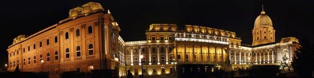 panorama för budapest stadsnatt Fotografering för Bildbyråer