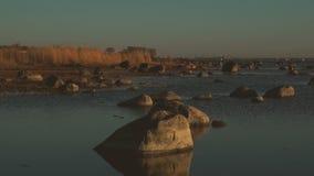 Panorama för kust för baltiskt hav lager videofilmer